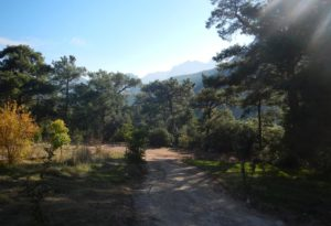 Peak Guesthouses Impressions
